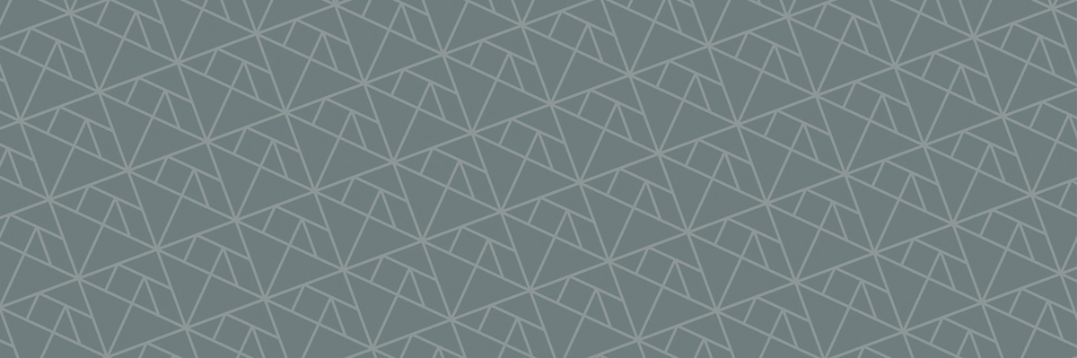 Honey Rogue Design Branding Paper Bird Custom Pattern